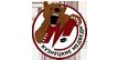 Кузнецкие Медведи (мол)