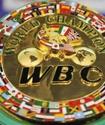 Астанада өтетін бокс кешінің басты жекпе-жегінде WBC чемпиондық белбеуі сарапқа салынады