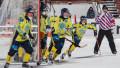 Қазақстан бендишілері Венгрия құрамасына жауапсыз 29 гол соқты