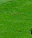 18 жастағы футболшы екі минутта дубль орындап, Марио Балотелли стилінде қуанды