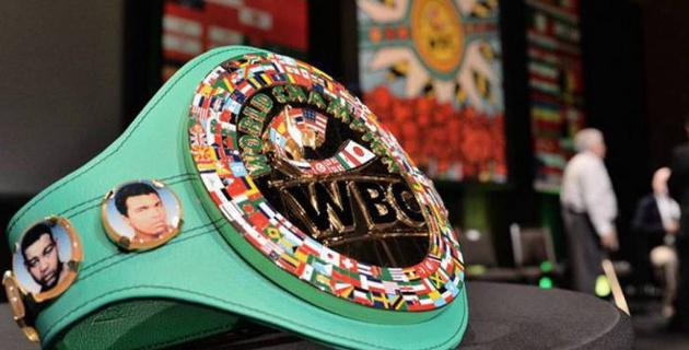 WBC боксты Олимпиада ойындарды бағдарламасында қалдыру туралы ХОК-қа өтініш білдірді
