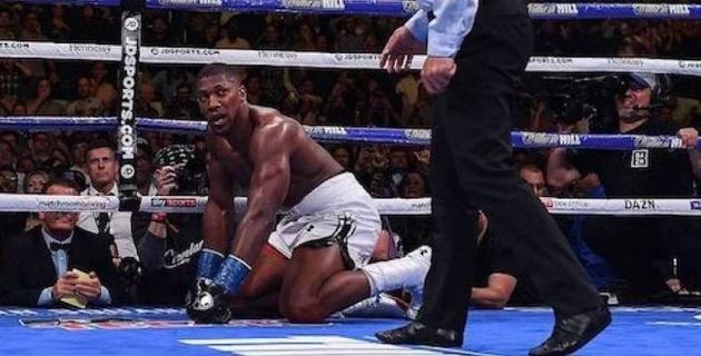 Роуч Головкинмен жаттыққан боксшыдан жеңілген Джошуаны өз залына шақырды
