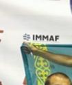 Қазақстандық спортшы аралас жекпе-жектен Еуропа чемпионы атанды