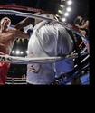 Геннадий Головкин - ТМД елдеріндегі ең табысты боксшы